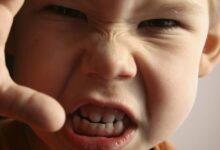 تصویر از پرخاشگری در کودکان/درمان و راه های کنترل پرخاشگری کودکان